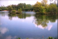 Franklins Lake - South Cerney Angling Club
